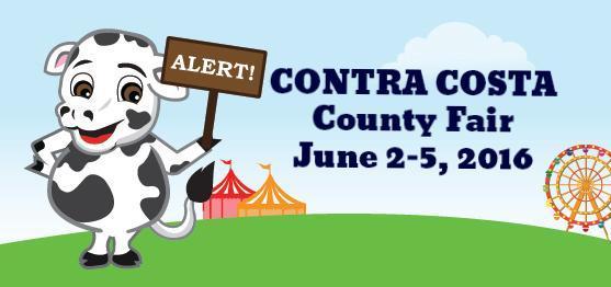 County Fair 2016